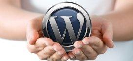WordPress, el software por excelencia en Chile para tu blog