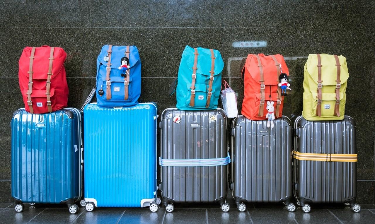koffers voor de reis