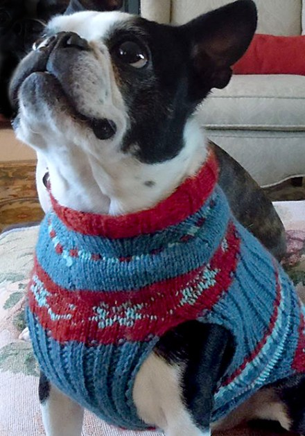 Anessa Andersland knitted this sweater for Emmit using Paul's pattern and her color choices.
