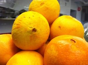 zested oranges