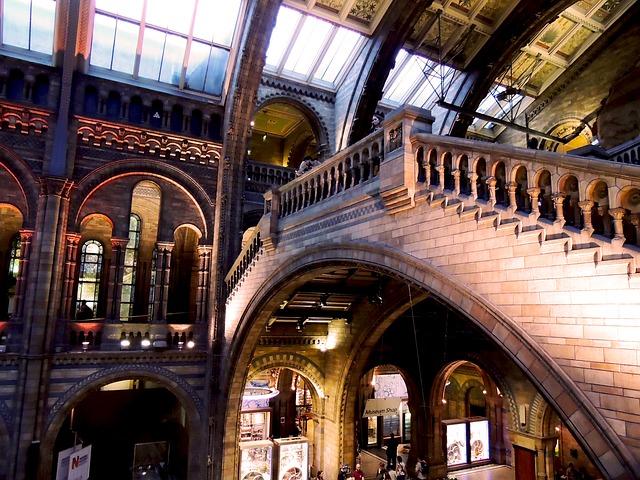 interno natural History Museum