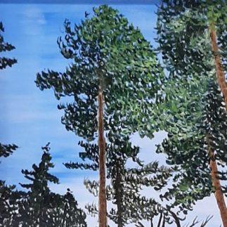 Verhalen over bomen.