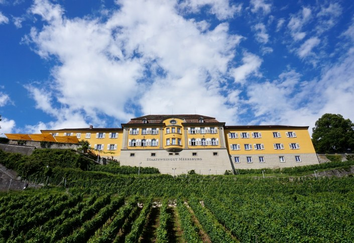 Meersburg vineyards