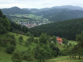 Black Forest views in Zell am Harmarsbach