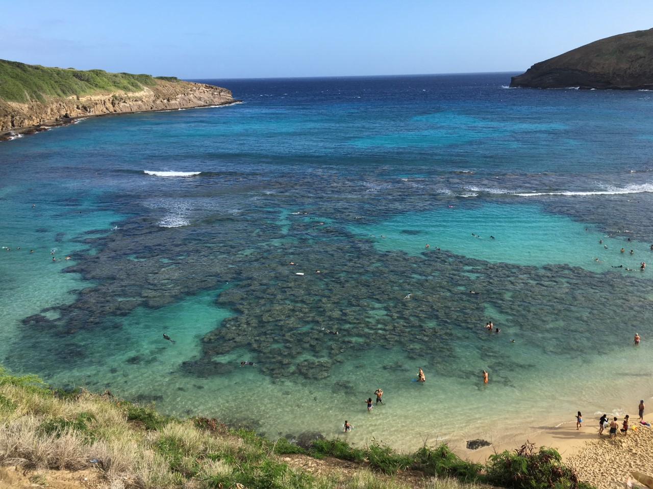 Snorkeling with the Masses at Hanauma Bay – Inger Hultgren Meyer