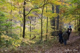 Backuswoods_CFuss_Nov2015_4