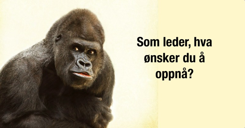 ledelse, åpenhet,