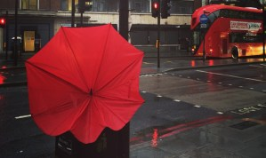 red London bus Londra kırmızı otobüs şehir kent kırmızı otobüs şemsiye trafik ışığı dur yaya trafik ışıkları kırmızı ışık