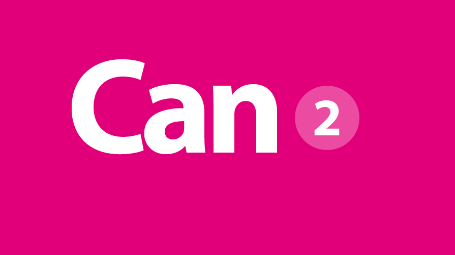 can-2-895×503