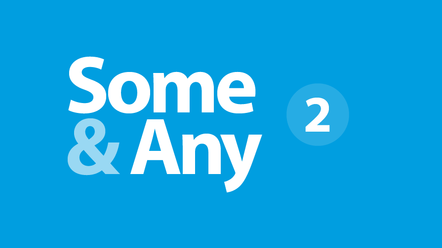 someany-2-895×503