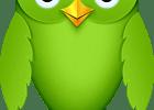 Desafio Duolingo - Duollenge