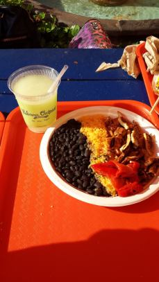Chicken Plato & frozen margarita