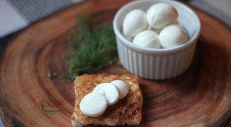 MozzarelladeBúfala - Mitos e Verdades