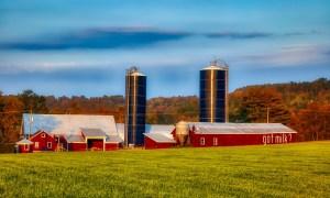 dairy farm in USA