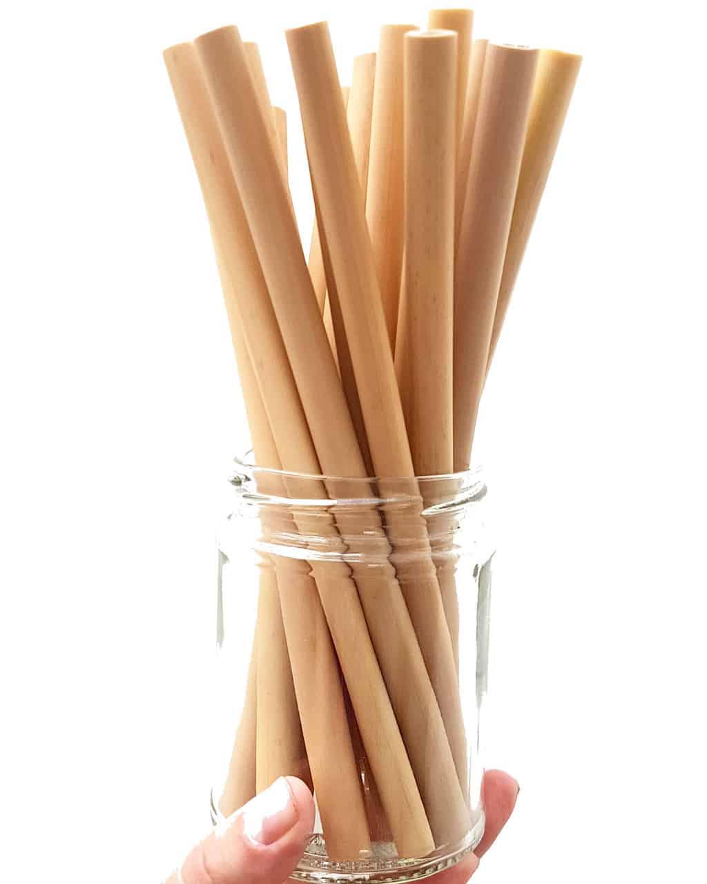 Bamboo Straws No BG