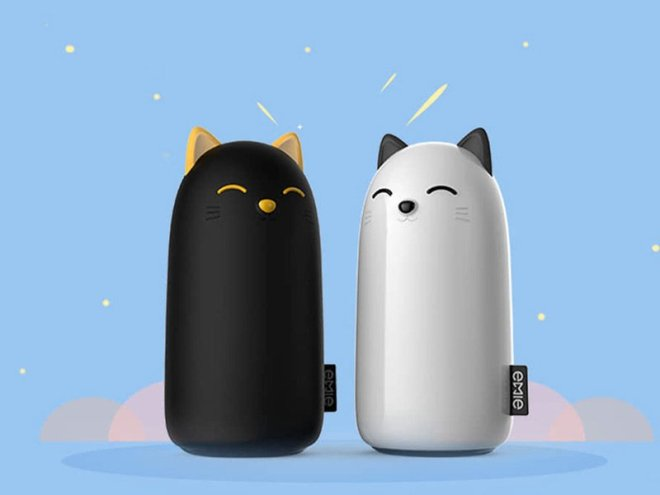 a-cat-themed-charger