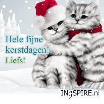 Wenskaart: Hele fijne kerstdagen! Liefs