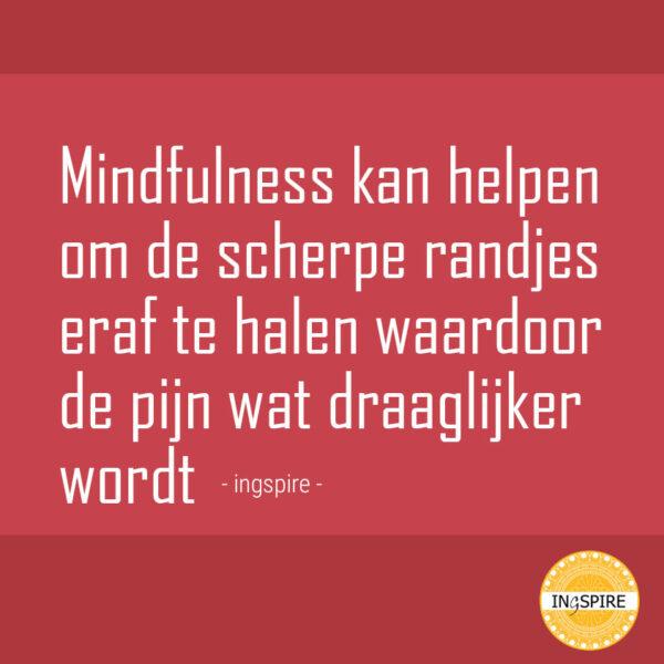 Quote Mindfulness kan helpen om de scherpe randjes eraf te halen waardoor de pijn wat draaglijker wordt
