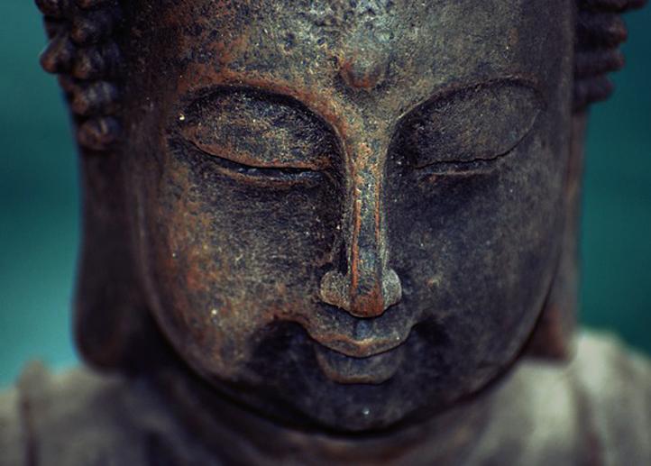 Wijsheid Van Boeddha Over Acceptatie En Geluk Hét