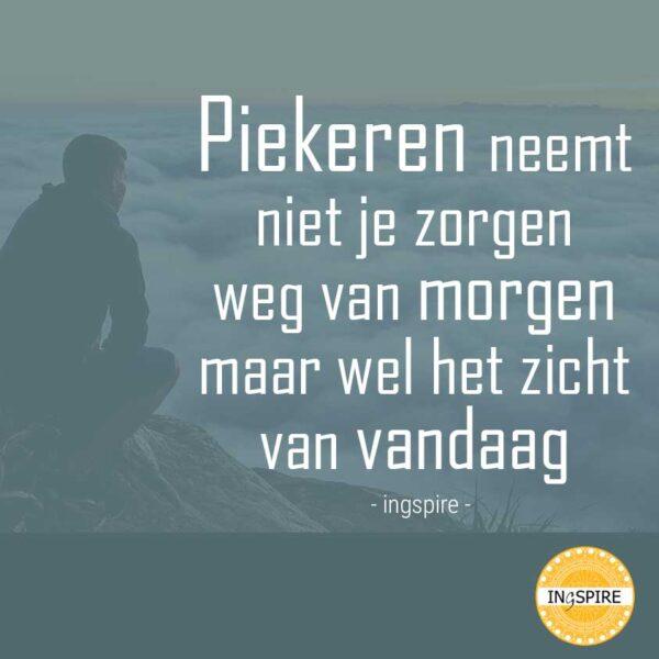 Citaat van Ingspire: Piekeren neemt niet je zorgen weg van morgen maar wel het zicht van vandaag.
