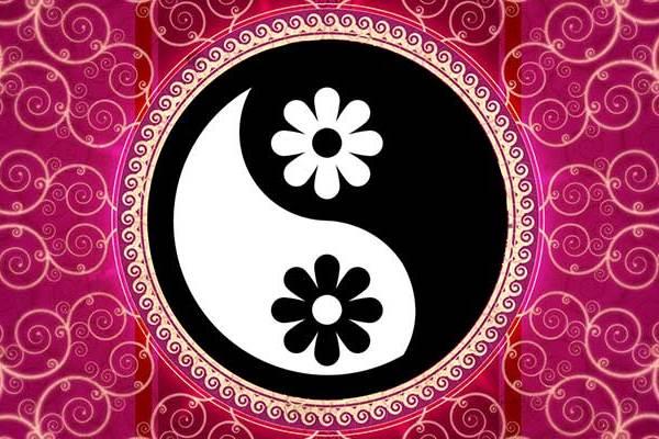 Terug in Balans met Yin en Yang energie - ingspire.nl