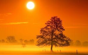 De warmte van zonlicht - www.ingspire.nl