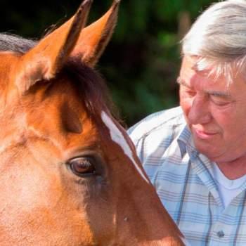 Begeleiding bij ziekte en rouw met behulp van paarden