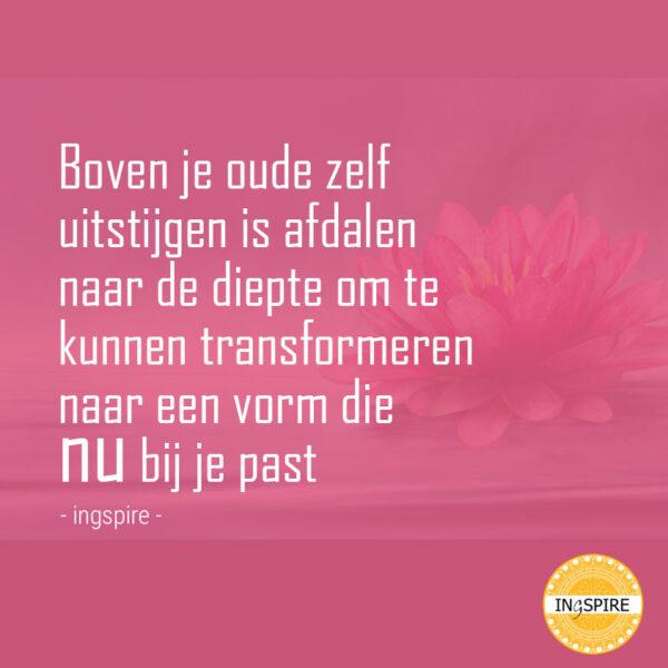 Prachtig citaat van inge ingspire.nl - Boven je oud zelf uit stijgen is afdalen om te kunnen transformeren naar een vorm die Nu bij jou past