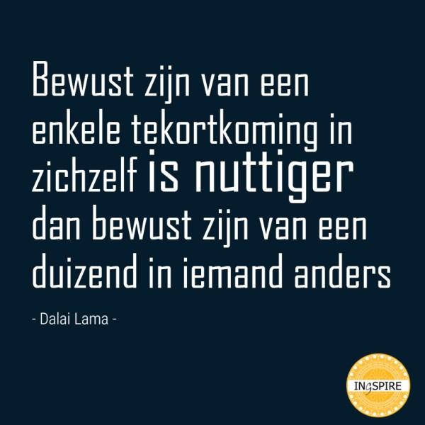 Dalai Lama Quote over tekortkoming en zelfreflectie - ingspire.nl