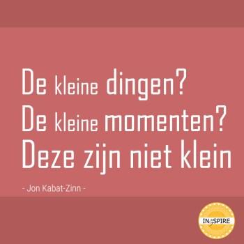 Quote van Jon Kabat-Zinn: De Kleine Dingen? De Kleine Momenten? Deze Zijn niet Klein
