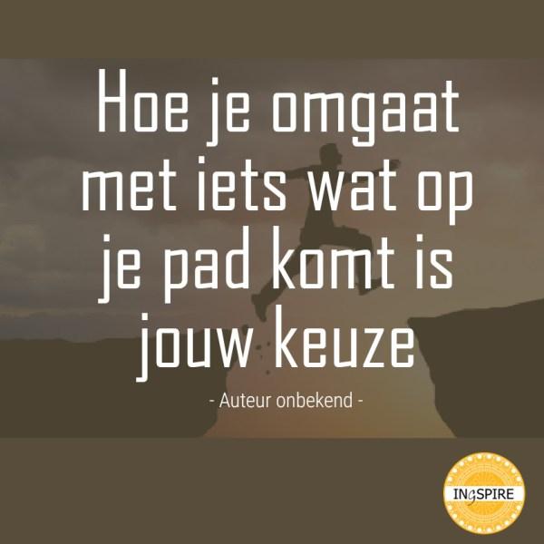 Hoe je omgaat met iets wat op je pad komt is jouw keuze - ingspire.nl