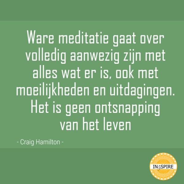 Citaat over Ware meditatie