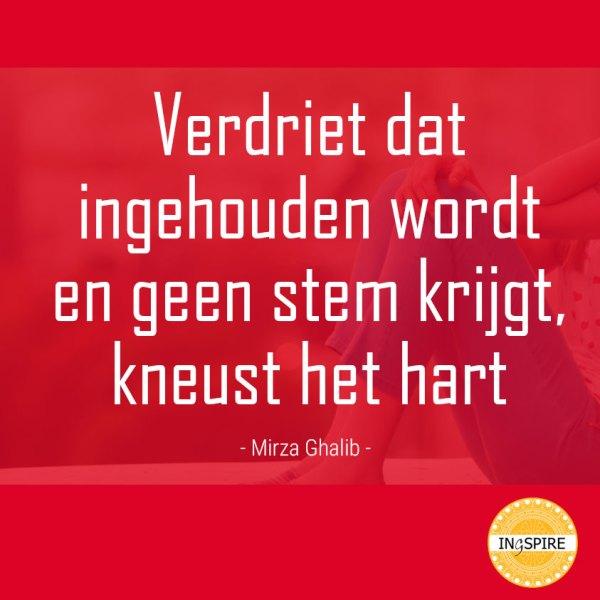 Mirza Ghalib citaat over wat Verdriet inhouden met je doet - ingspire.nl