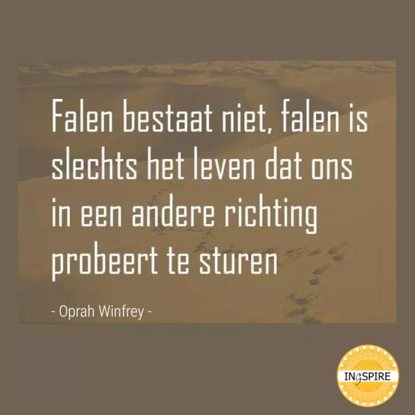 Quote over Falen en Succes in het leven