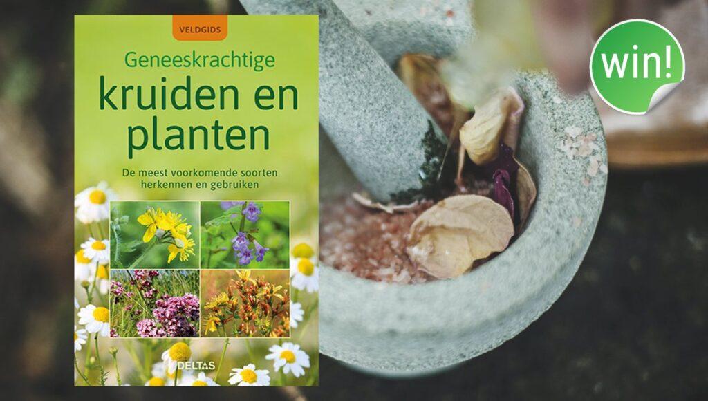 Winactie kruiden en planten veldgids
