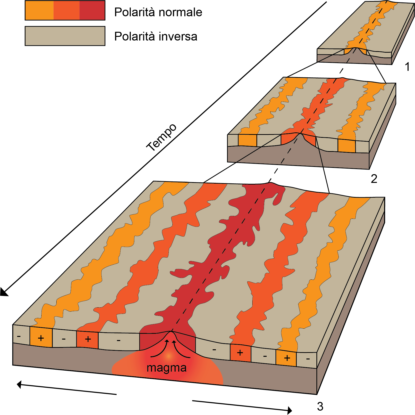 la datazione paleomagnetica si basa su