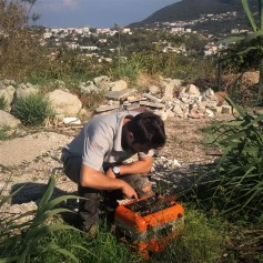 Misure geofisiche di supporto alla microzonazione sismica dell'area di Casamicciola Terme. I rilievi geofisici sono stati effettuati pochi giorni dopo il terremoto che ha colpito l'isola di Ischia il 21 agosto 2017. Foto di V. Sapia © INGV