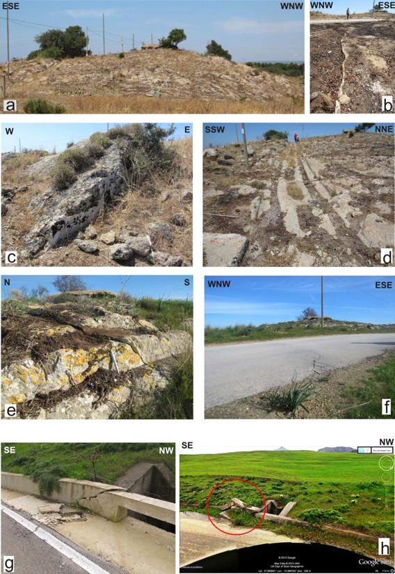Figura 2: In questa immagine vengono riportate alcune foto delle zone individuate sul terreno che mostrano evidenti segni di movimenti compressivi lungo la linea di faglia.