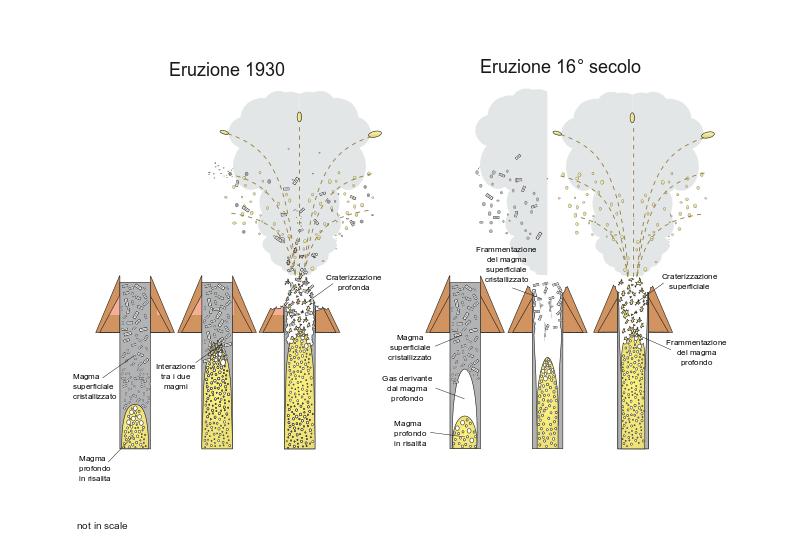 Figura 6_Model