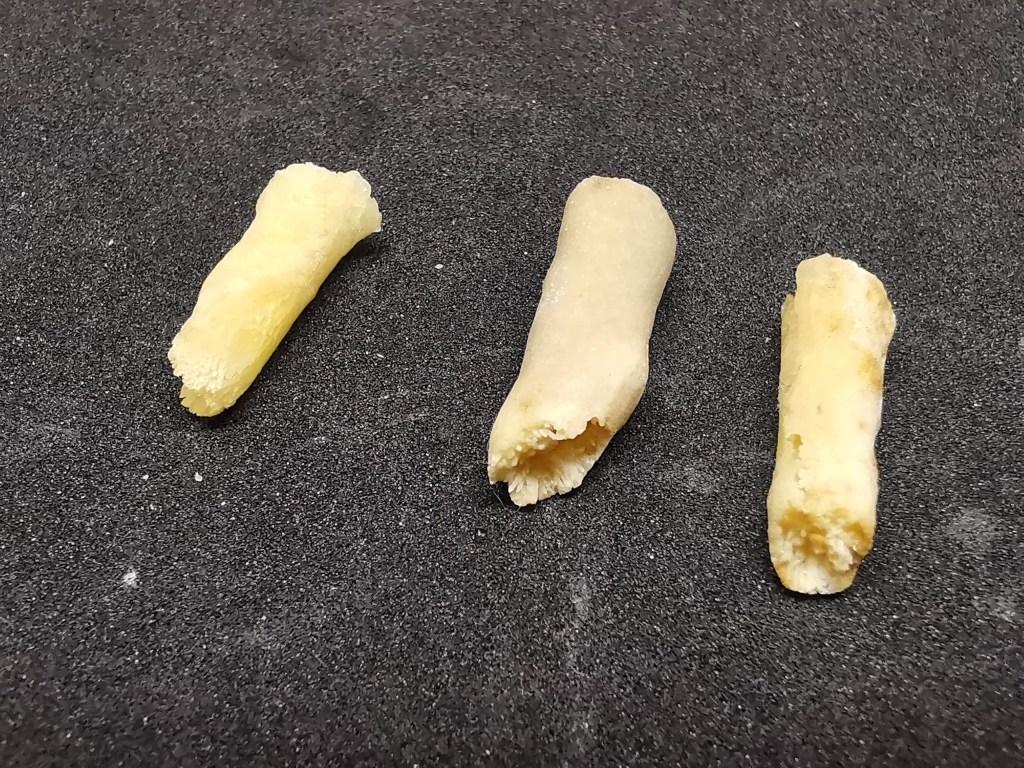 Figura 2 - Piccole stalattiti, di circa 2 cm, forate e che probabilmente contenevano delle piccole radici pendenti dal soffitto.