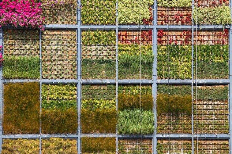 https://i0.wp.com/inhabitat.com/wp-content/blogs.dir/1/files/2010/07/Vertical-Garden-in-San-Vicente-3.jpg