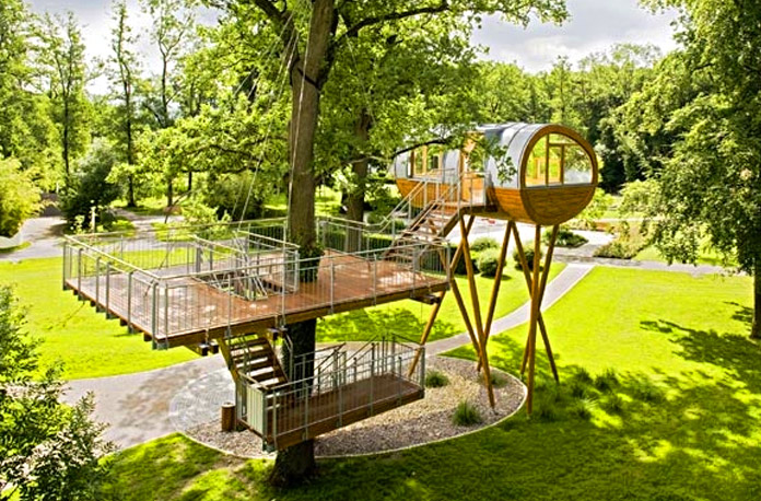 Baumraums World Of Living Tree House Sits On Spiders