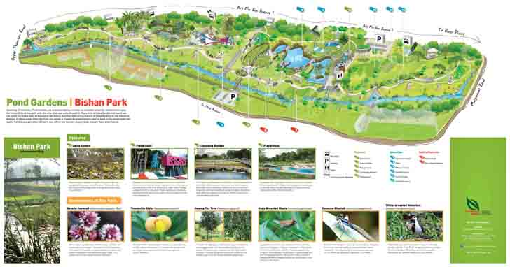 Singapores Bishan Park Wins Landscape Of The Year Award