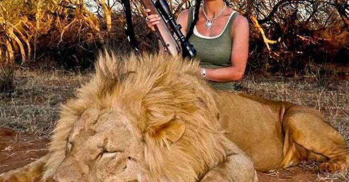 American TV Host Kills Lion and Incites the Rage of American TV Host Kills Lion Enrages South