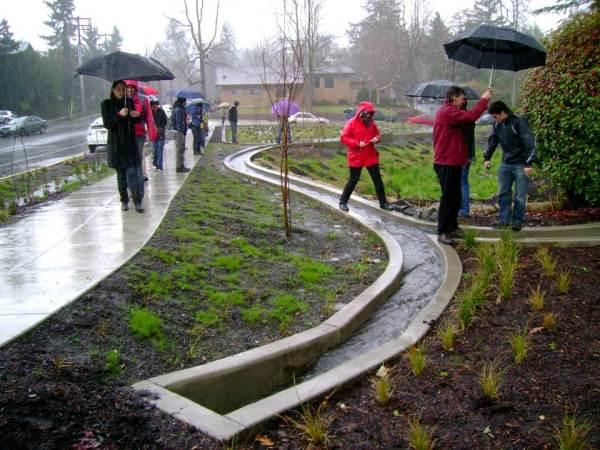 artful rainwater design inhabitat