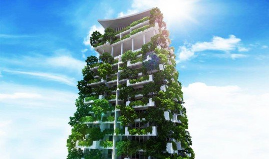 Building Vertical Garden