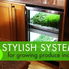 Indoor Kitchen Garden Moen Renzo Faucet 6 Stylish Systems To Keep Your Organic Vegetable Growing Year Round