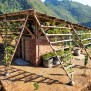 Low Cost Bamboo Restroom In Vietnam Is Completely Covered