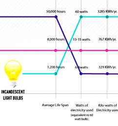 infographic for the cost which type of lightbulb reigns supreme  [ 1580 x 911 Pixel ]