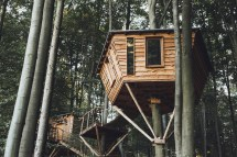 Gorgeous Robin Nest Treehouse Hotel Immerses In